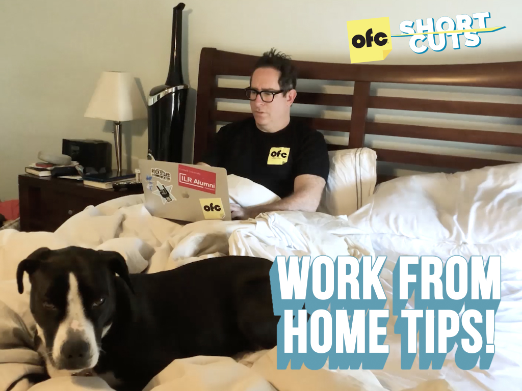 Man working in bed from home with a dog